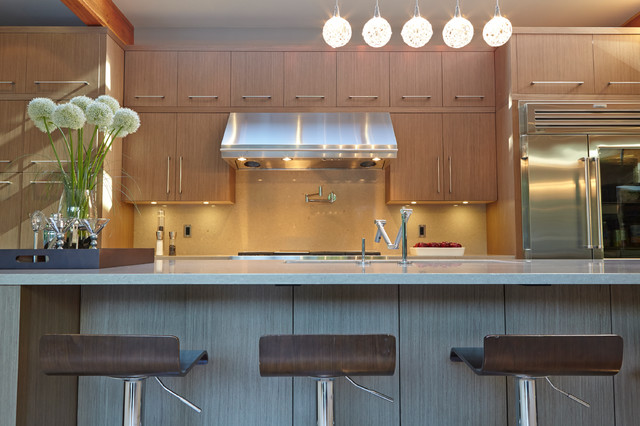 coquitlam silver lining modern kitchen vancouver by my house design build team