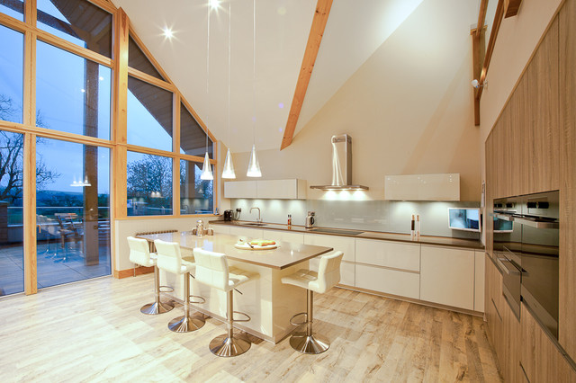 Contemporary kitchen in Other.