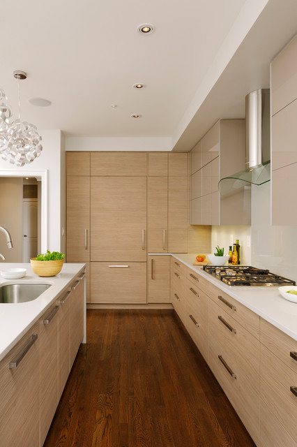 Georgetown northwest washington dc contemporary kitchen for Northwest contemporary design