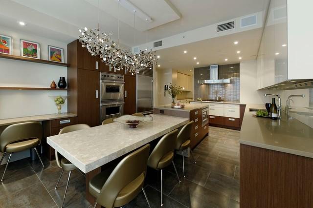 Washington d c contemporary penthouse kitchen design - Kitchen and bath design washington dc ...