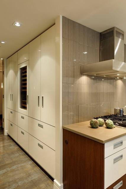 Washington Dc Contemporary Penthouse Kitchen Design