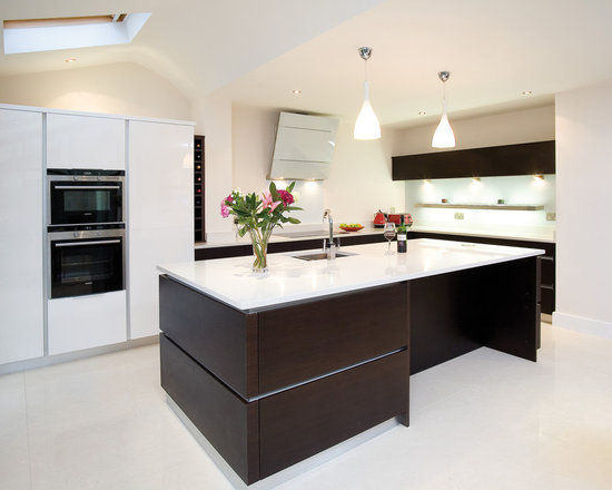 Wenge kitchen design ideas pictures remodel and decor for Wenge kitchen designs