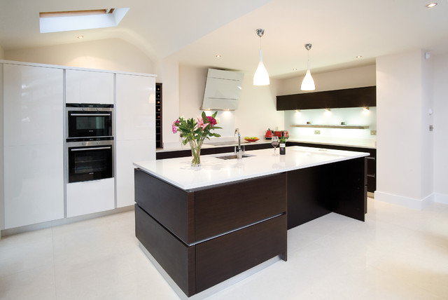 Wenge And White Contemporary Kitchen Other By