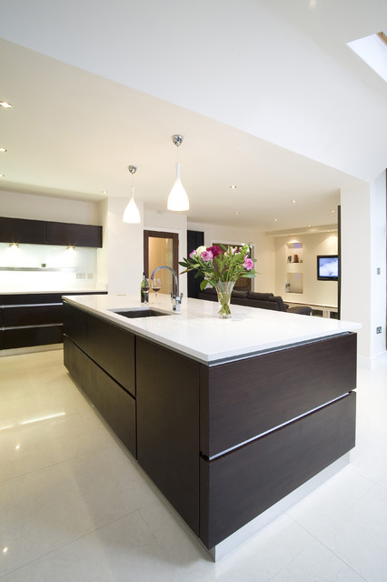 Wenge and White contemporary kitchen
