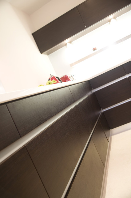 Wenge and White contemporary-kitchen