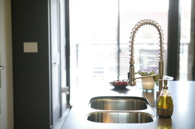 Westgate Sink contemporary-kitchen