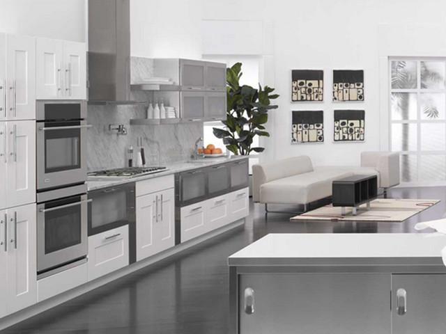 White Kitchen contemporary