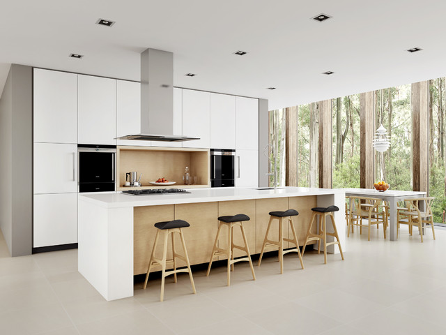 Mid sized danish galley porcelain floor eat in kitchen photo Sydney with  a Minimalist Kitchen Houzz