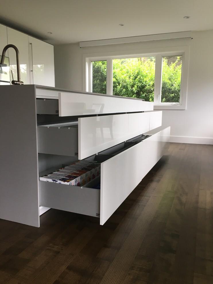 White Poggenpohl Kitchen And Laundry Contemporary Kitchen Hawaii By Poggenpohl Kitchens Hawaii