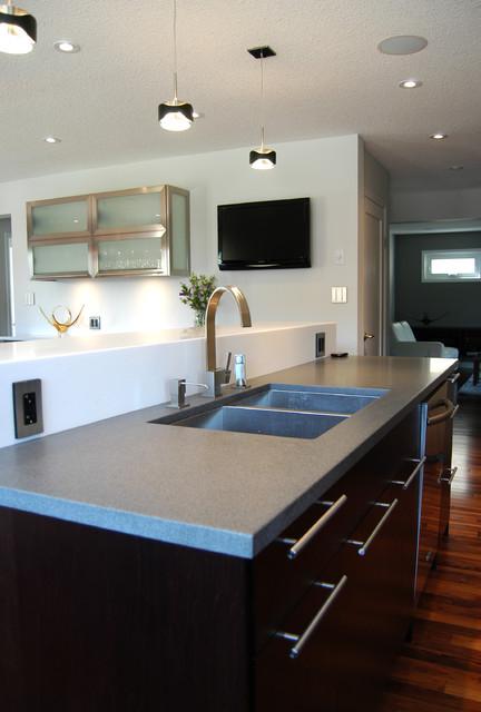 Whole House Renovation contemporary-kitchen