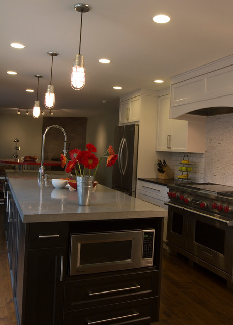 Whole House Update contemporary-kitchen
