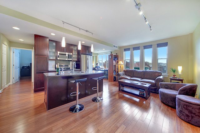 Wide shot of living space and kitchen contemporary-kitchen