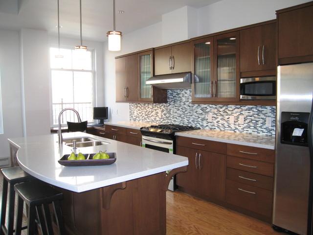 Wieland Block Condominiums traditional-kitchen