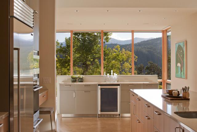 Williams Ridge House contemporary-kitchen