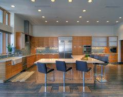 Williams street Loft contemporary-kitchen