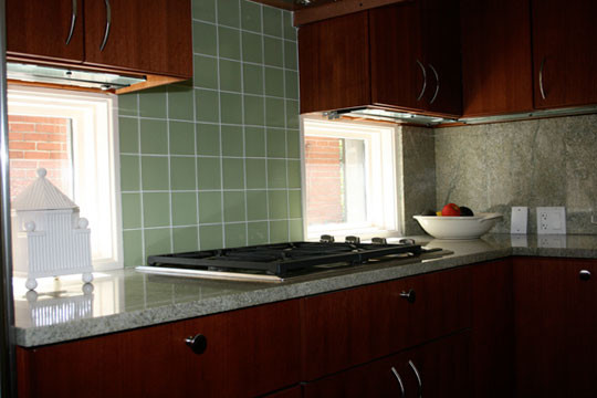 windows cabinets traditional kitchen other metro