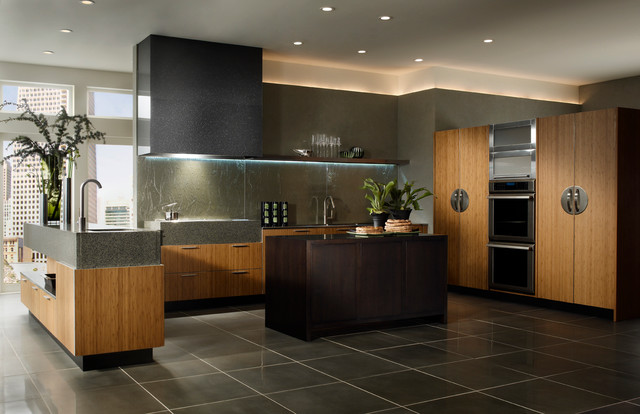 Wood mode linear solutions kitchen contemporary for Kitchen design houston
