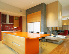 Woodland Residence contemporary kitchen