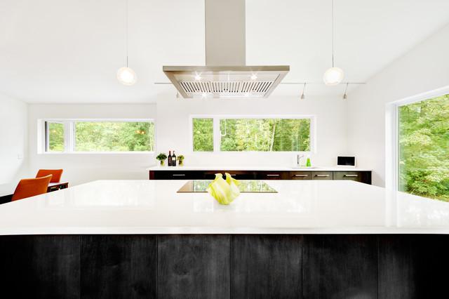 Yellow Point modern-kitchen