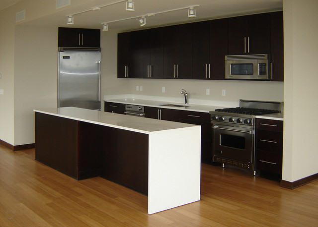 Zenity condo kitchens contemporary kitchen minneapolis for Modern kitchen design for condo