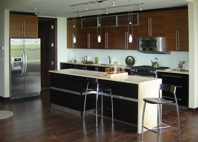 Zenity Condo Kitchens Contemporary Kitchen
