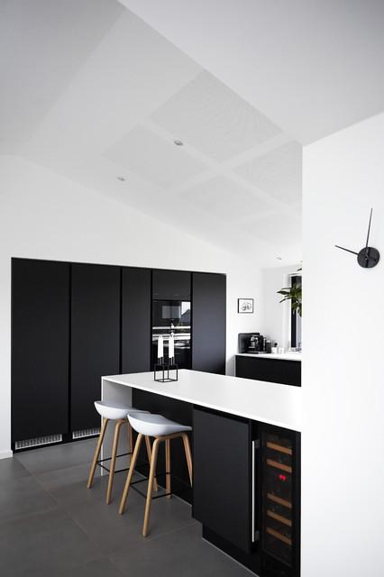 Houzz tours maja nur design modern kitchen