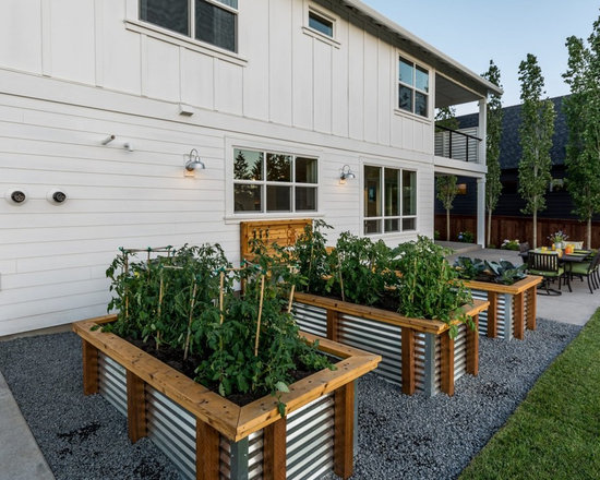 Corrugated planters home design ideas pictures remodel for Home garden design houzz