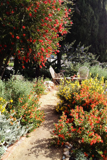 2016 native plant garden tour jardin los angeles par for 5 jardin ockeghem tours
