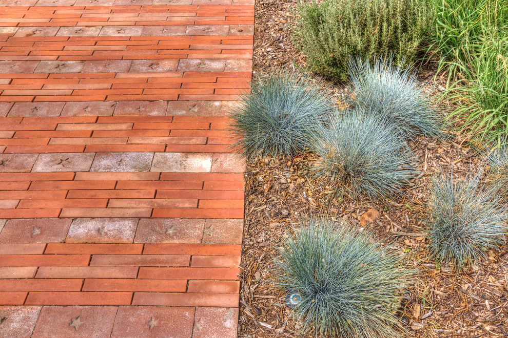 This is an example of a modern landscaping in Dallas.