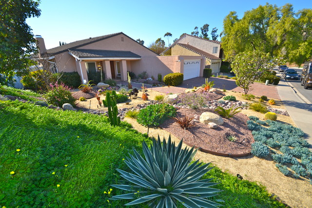92124 tierrasanta colorful xeriscape low water low for Low maintenance sloping garden ideas