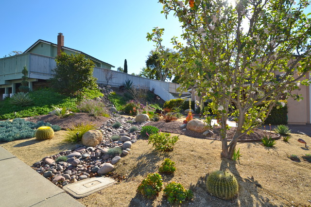 92124 Tierrasanta Colorful Xeriscape Low Water Maintenance Front Yard Tropical