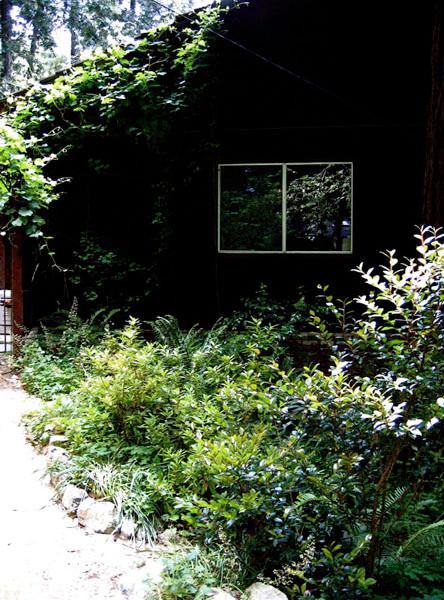 A Ben Lomond Native Plant Library