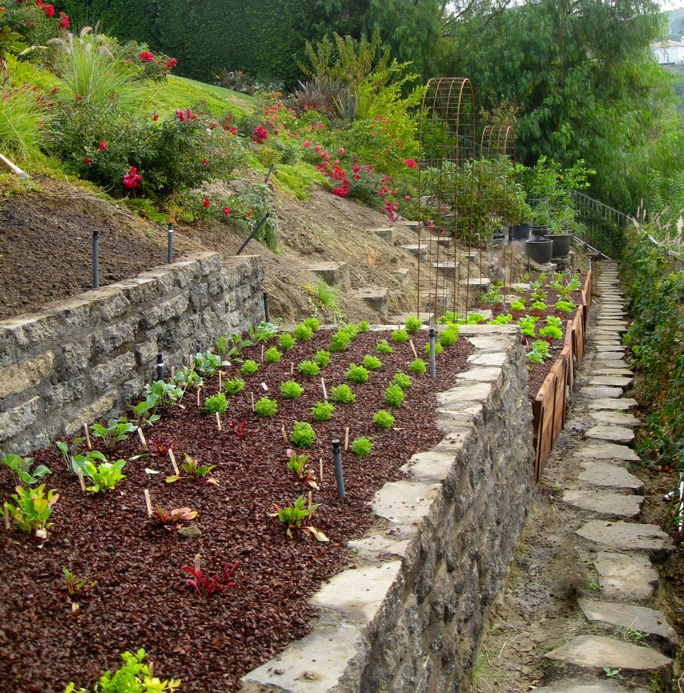 Design ideas for a traditional vegetable garden landscape in Los Angeles.