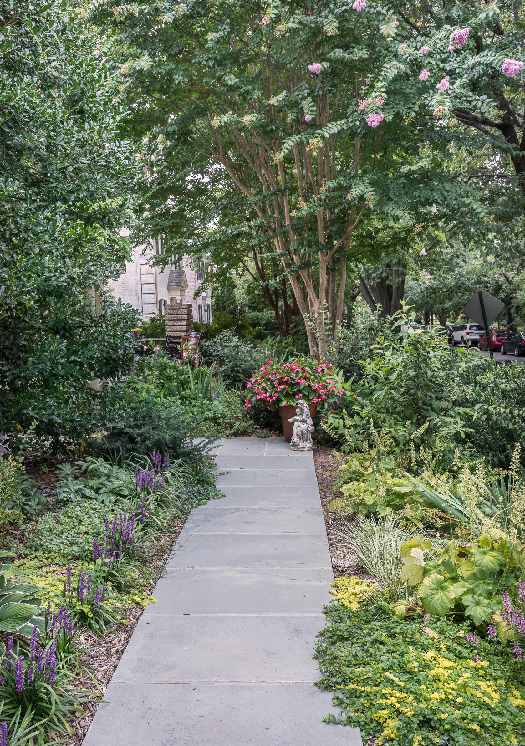 A City Garden on a Corner Lot