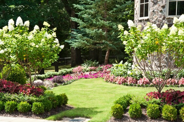 A complete renovation traditional landscape for Garden renovation ideas