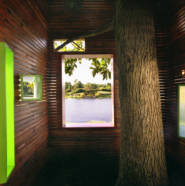 A house for a tree contemporary-kids