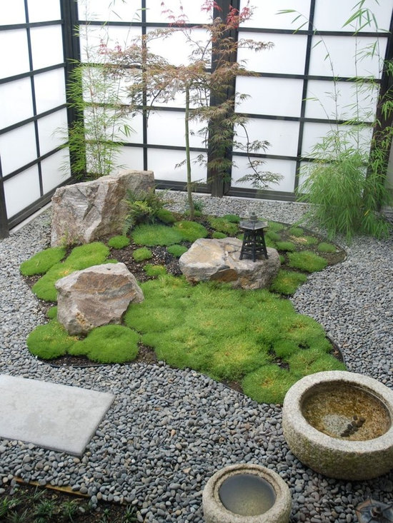 Rock garden home design ideas pictures remodel and decor for Home garden design houzz