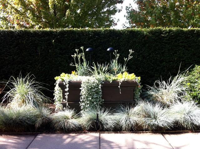 A modern tropical garden 2012 tropical landscape for Garden design vancouver