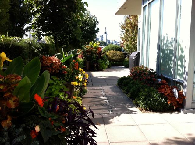 A Modern Tropical Garden 2012 tropical-landscape