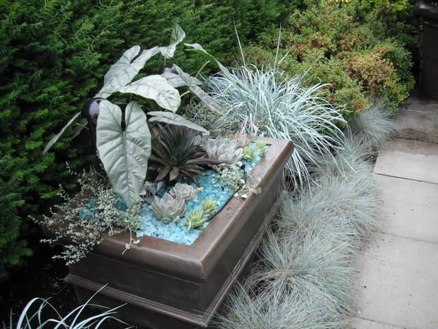 A Modern Tropical Patio Garden tropical-landscape