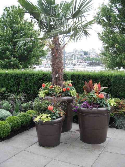 A modern tropical patio garden tropical landscape for Decorating patio with potted plants