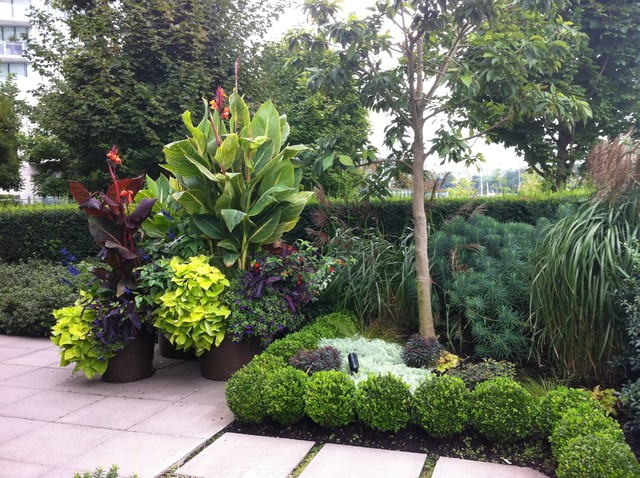 A modern tropical patio garden tropical landscape for Tropical landscape