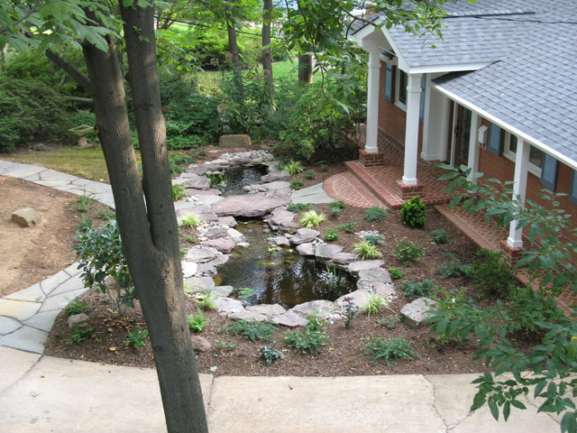 A Pond For The Front Entry Eclectic Landscape Dc