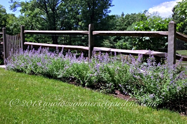 A Post And Rail Fence And Perennial Planting Traditional