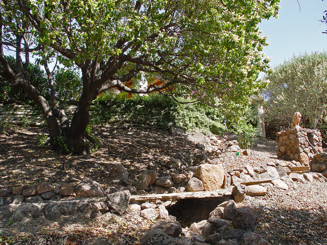 A San Rafael Garden mediterranean-landscape