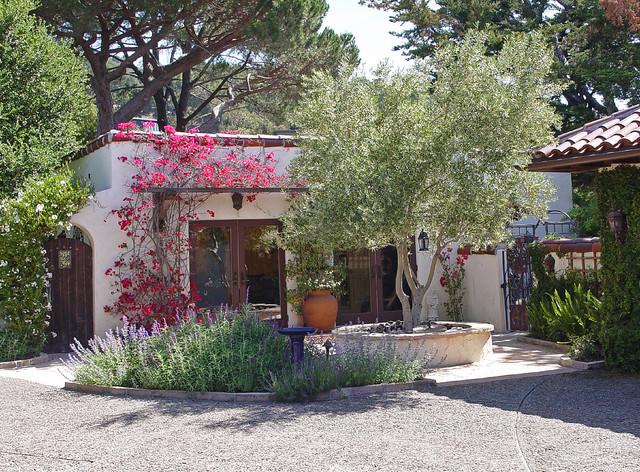 A San Rafael Garden Mediterranean Landscape San