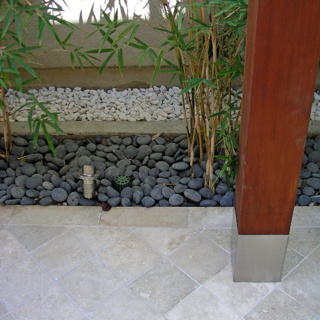 A Tropical Modern Sideyard contemporary landscape