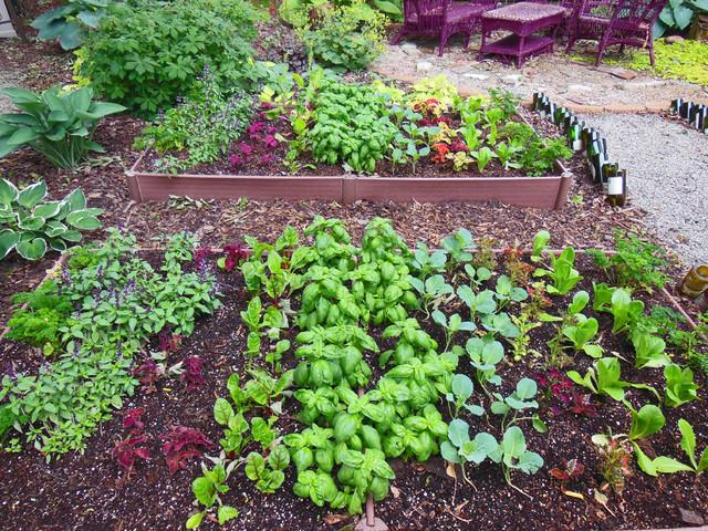 A Vegetable Garden In The Shade