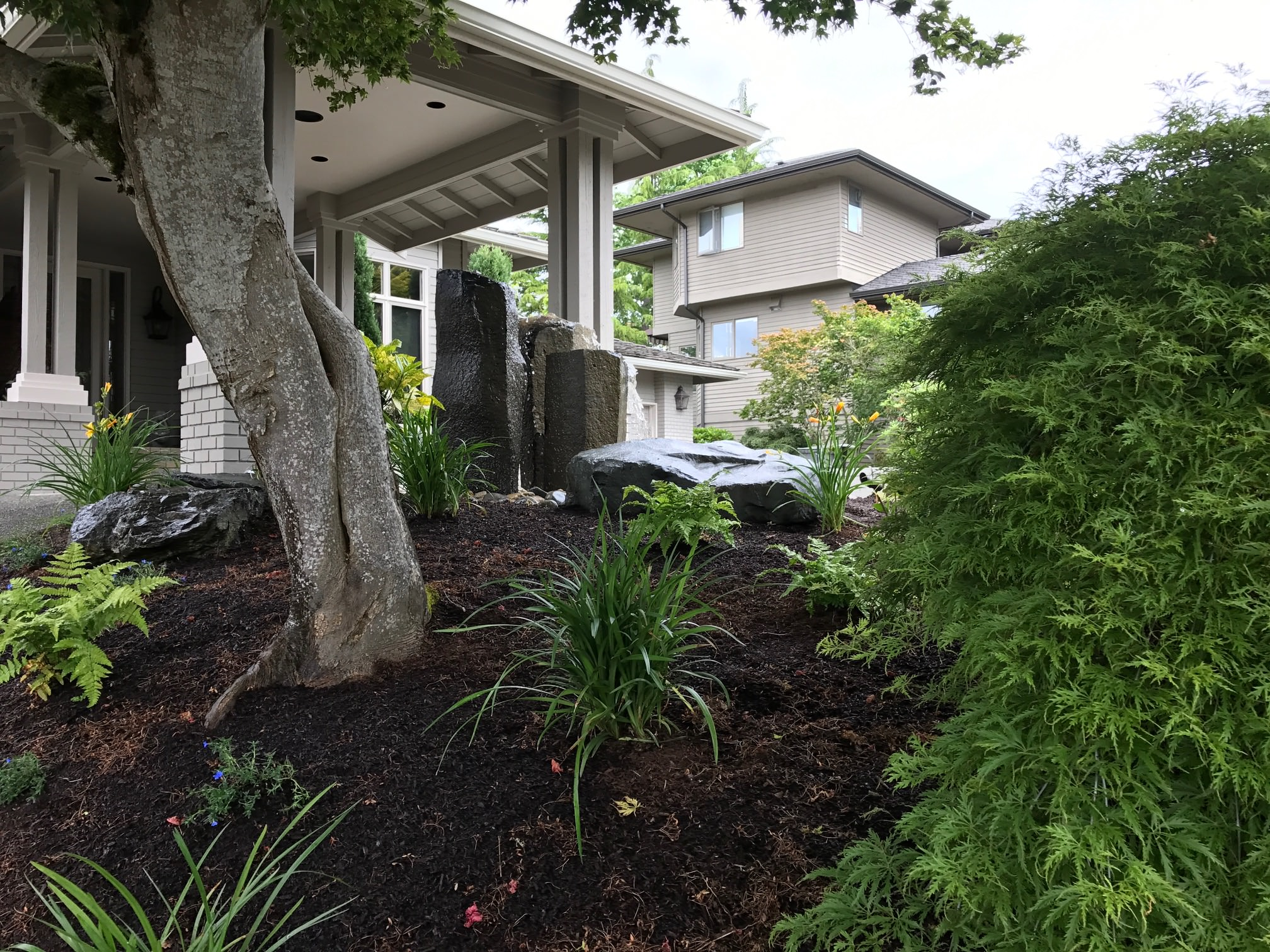 After Landscape Renovation: Front Entry Outdoor Experience