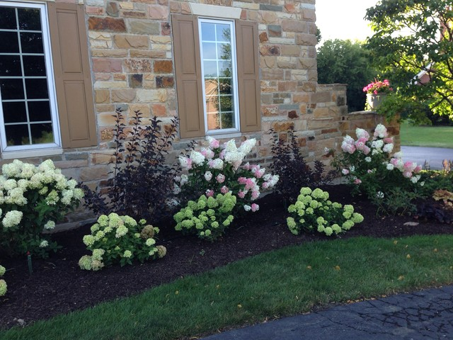 After Photos Hawthorn Woods Traditional Landscape